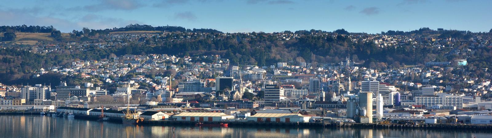 LJ Hooker Dunedin office street view image